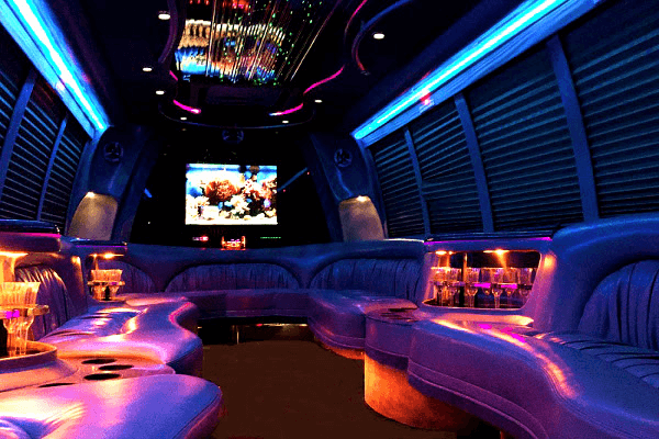 Baton-Rouge 18 Passenger Party Bus